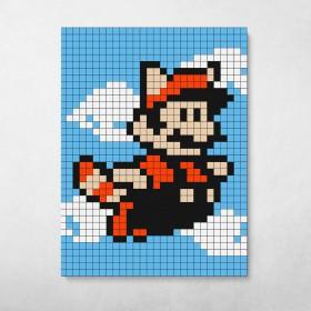 Pixel Raccoon Suit